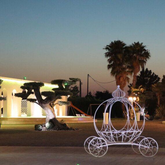 Matrimoni Foggia e provincia carrozza